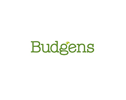 5(budgens)